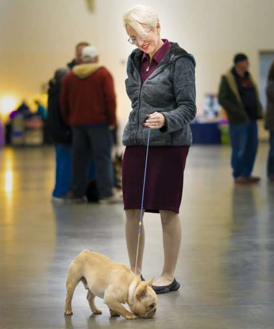 April 7, 2018 - Dog owner and competitor at Kennel Club Quilt City Classic Dog Show Paducah Convention Center/photonews247.com