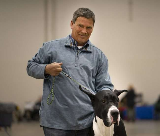 April 7, 2018 - A very nice gentleman caring for Great Dane named Batman at Paducah Kennel Club Quilt City Classic Dog Show/photonews247.com