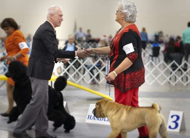 April 8, 2018 - Owner Handler competition during Kennel Club Quilt Classic Dog Show Paducah Convention Center/photonews247.com