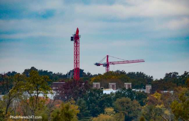 Construction cranes on the horizon from Art Museum at Forest Park Forever. credit craig currie 2019