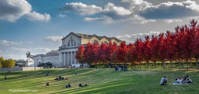 Trees turn colors Fall St Louis Art Museum